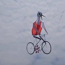 这风筝创意牛逼!鹤骑自行车上天了