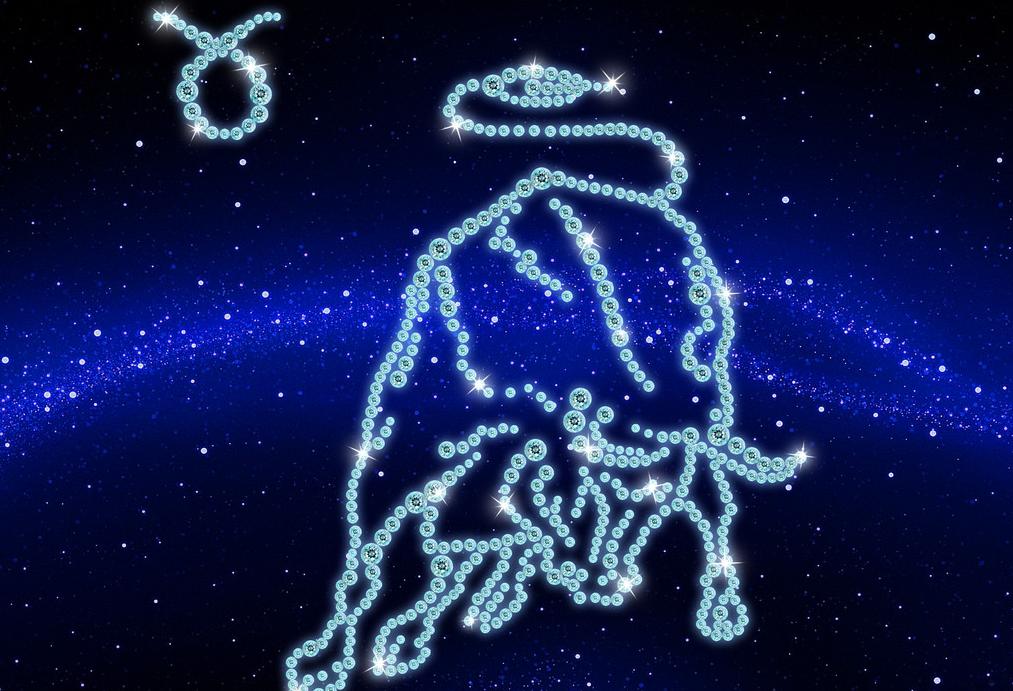 它只要和金牛座在一起了,就是十二星座中最幸福的星座天蝎座的幸福花图片