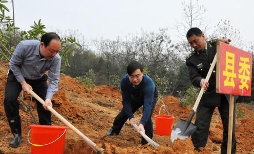 湘潭县开展全民义务植树活动