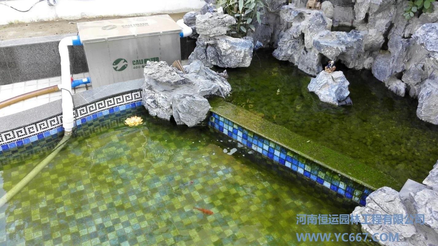 鱼池背景图