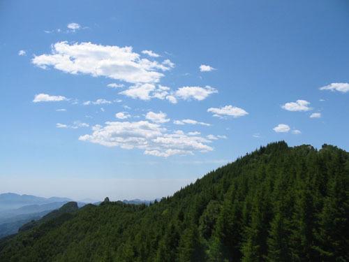 驼梁山,国家aaaa级自然风景区,野生公园,生态旅游区.