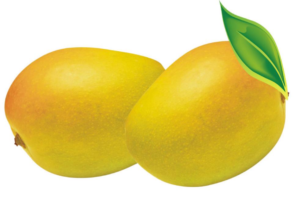 芒果彩铅步骤素描图片
