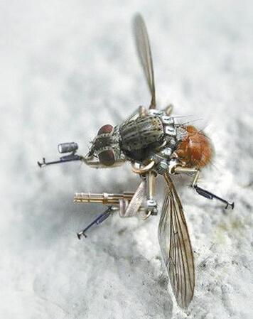 昆虫 泥工步骤图