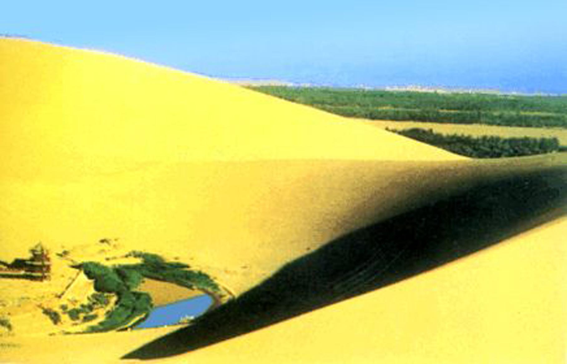 祖国大好河山风景沙漠